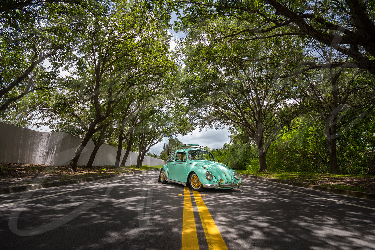 Fresh Mint Volkswagen beetle - Original Print