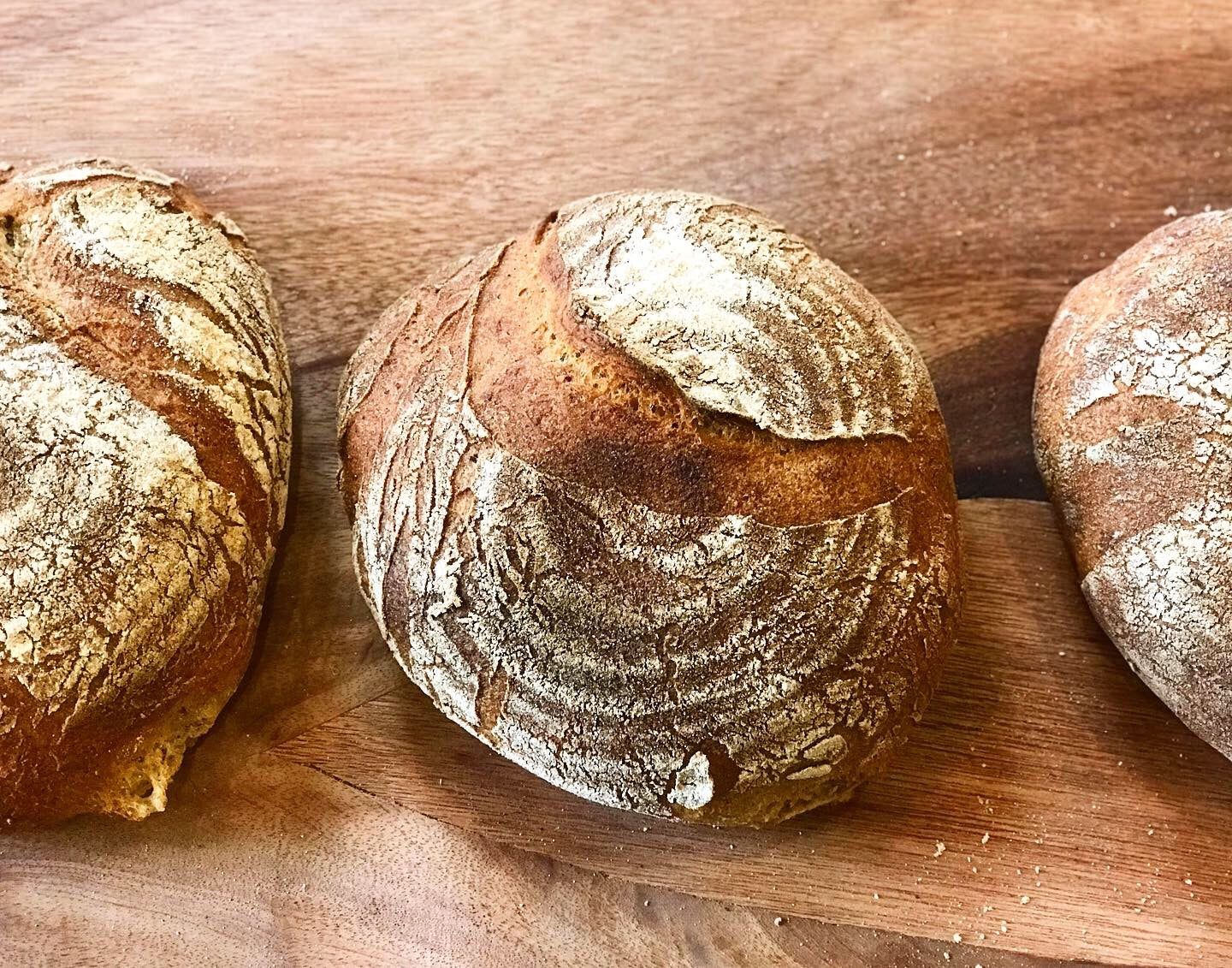 gluten free artisanal sourdough round loaves