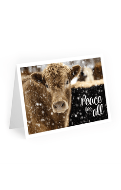 2020 Mercy For Animals Holiday Cards, Cow