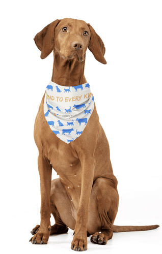 'Every Kind' Animal Bandana