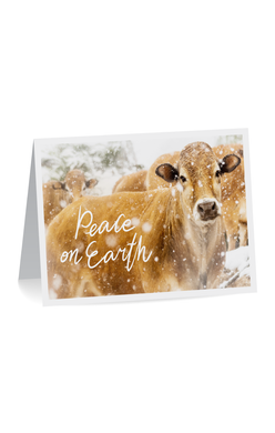 2019 Mercy For Animals Holiday Cards (Pack of 10)