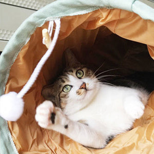 A cat playing with a fur ball in the cat tunnel