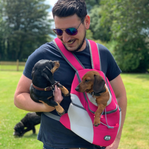 A guy holding two puppies in a puppy bag pack
