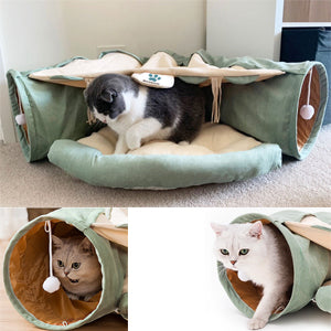 3 cat using the cat tunnel