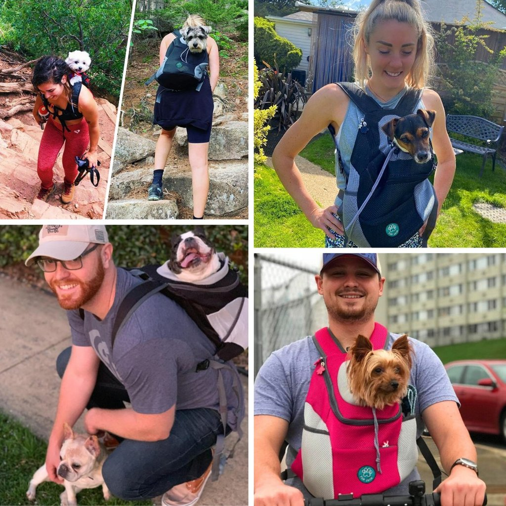 people camping, biking with their puppies in their puppy rucksack