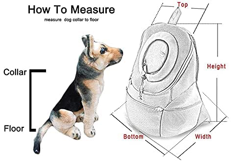 How to measure your dog chart