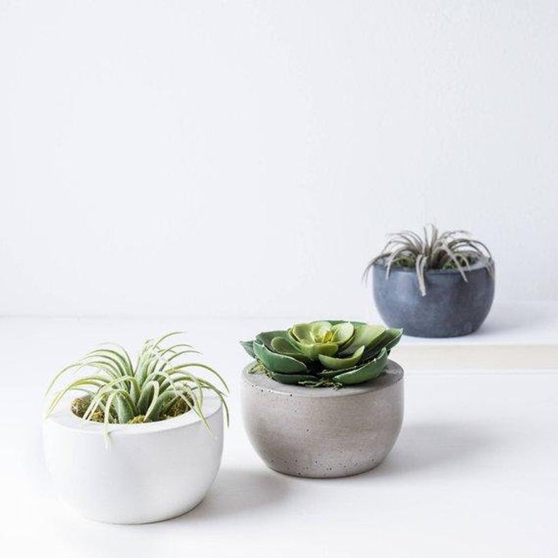 Beautiful and Practical Concrete Planters