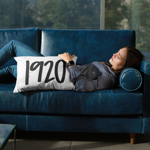 ♀️ 1920 Premium High Quality Washable Pillow Cover AND Insert