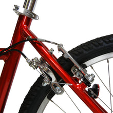 Load image into Gallery viewer, Buddy Bike Family Classic 8 Speed, Chrome Red, BB102-AL-8.17C
