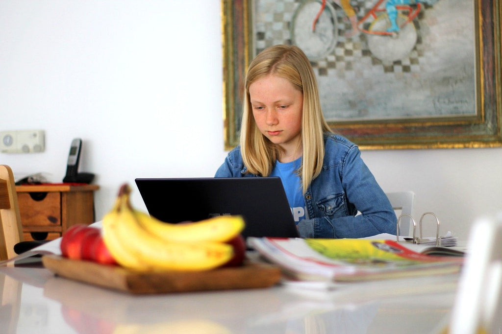 Keeping Your Children Safe When Homeschooling