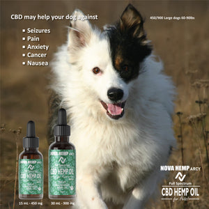 30mL CBD Dog Oil - NovaCBD
