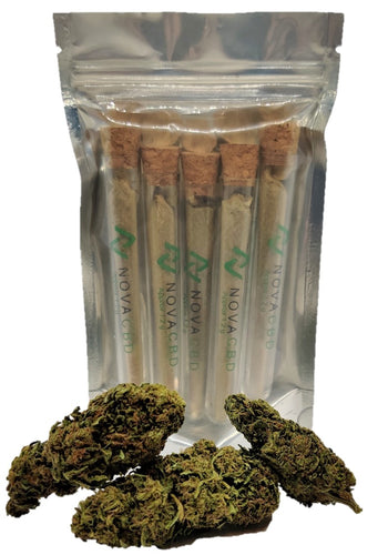 Pre-Rolled Cones - Bundle 5 PACK - NovaCBD