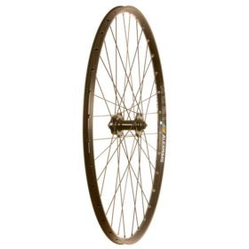 Wheel Shop Alex MD21/Formula DC-20/DC-22/DT Stainless 29'' Wheel : Disc IS 6-bolt 29'' / 622 Front Holes: 32H QR 100mm
