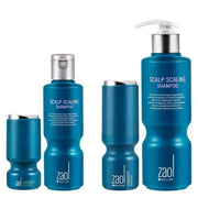 [Zaol Doctor's Order] Synergy Booster + Scaling Shampoo SET Hair loss management - BEST BEAUTIP
