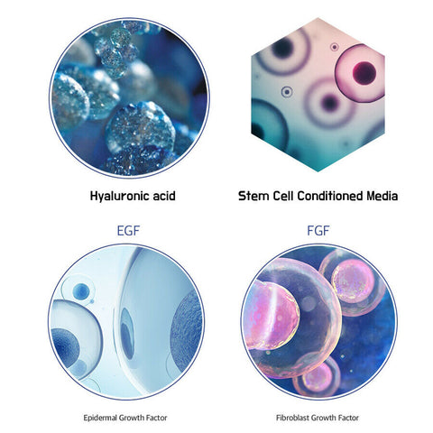 [FRANZ] Stem Cell Culture Medium 1ml 10% or 30% K-beauty Highly Concentrated - BEST BEAUTIP