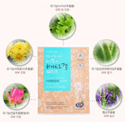 [WHAMISA] Organic Flowers & Aloe Vera Fermented Hydrogel Sheet Mask 5pcs K-beauty - BEST BEAUTIP