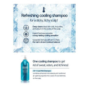 [Esthetic House] CP-1 Cool Mint Shampoo 500ml / 16.9oz K-beauty - BEST BEAUTIP