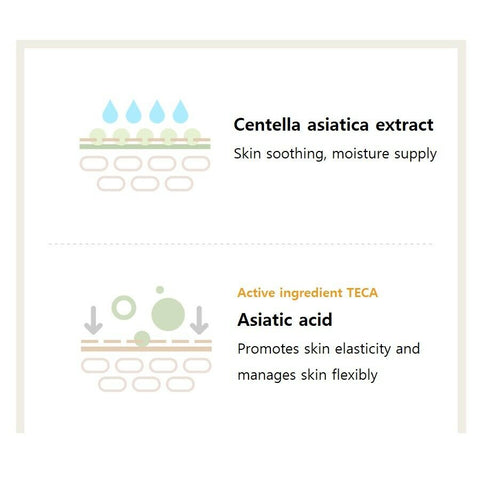 [SKIN1004] Madagascar Centella Cream 75ml / 2.53oz K-beauty - BEST BEAUTIP