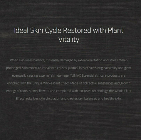 [YUNJAC] Whole Plant Effect Essential Cream 50ml / 1.69oz K-beauty - BEST BEAUTIP