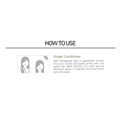 [Esthetic House] CP-1 Ginger Purifying Conditioner 500ml / 16.9oz K-beauty - BEST BEAUTIP