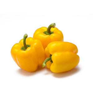 Yellow Pepper 黃椒