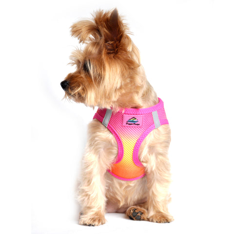American River Choke Free Dog Harness - Raspberry Pink and Orange