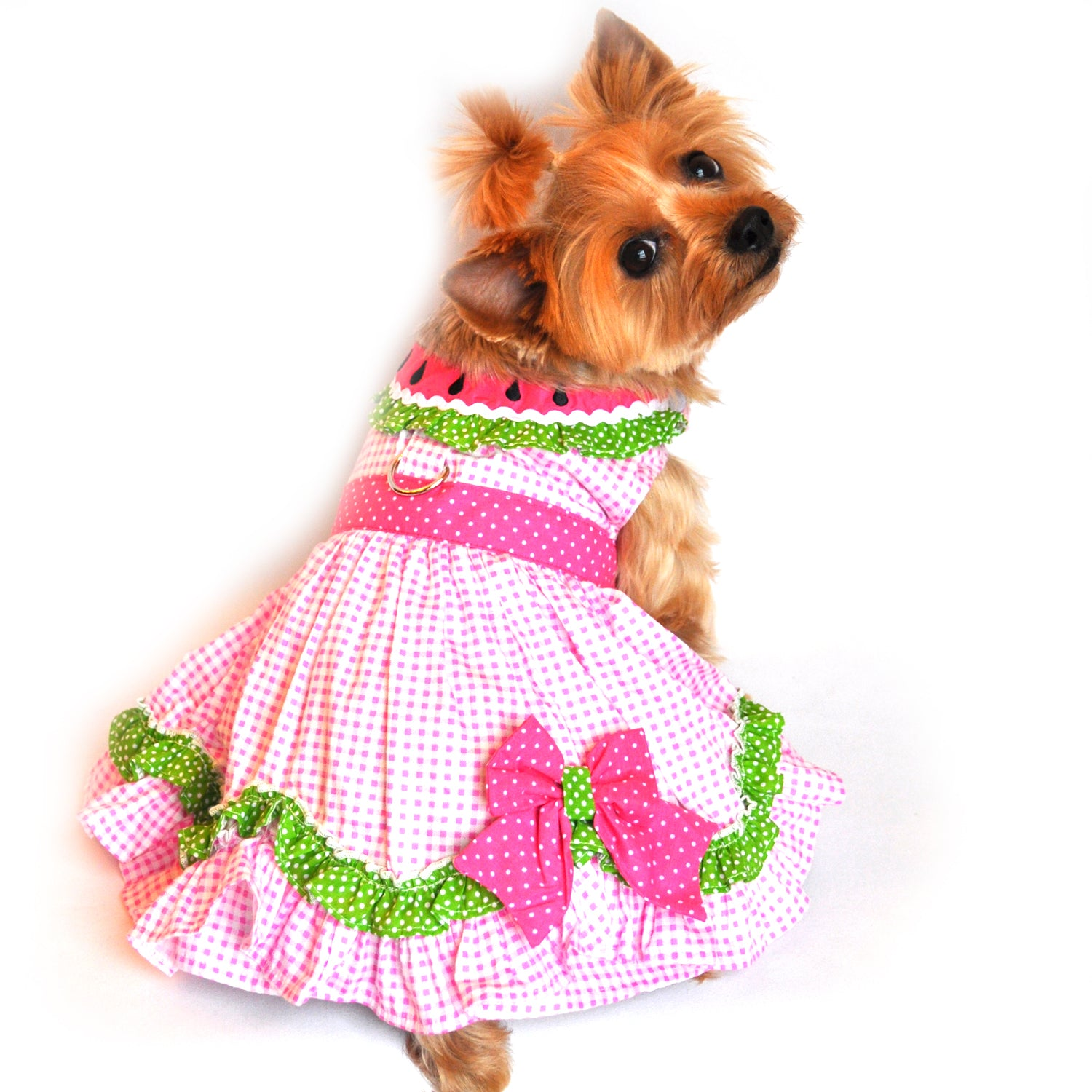 Watermelon Dog Dress With Matching Leash