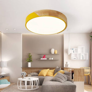 OSUKI - LED 18W 30CM Ceiling Light GW77 (WHITE LIGHT)