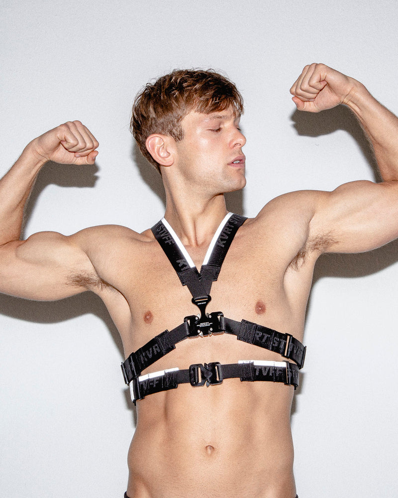 Black Harness with Reflective