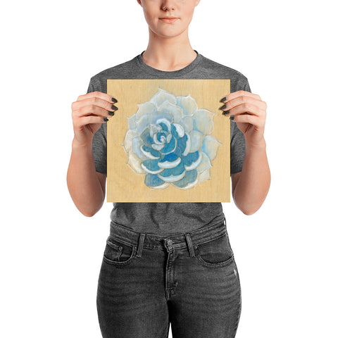 White and Blue Watercolor print of painting on wood of an Ice Succulent Poster