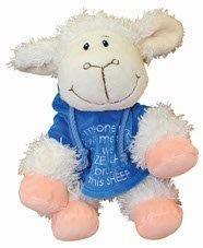 PK-30506 - Sheep 22CM Someone Who Loves Me Blue - New Zealand Gifts & Souvenirs