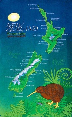PK-65046 - Tea Towel - Brown Kiwi Weta Blue Green - New Zealand Gifts & Souvenirs