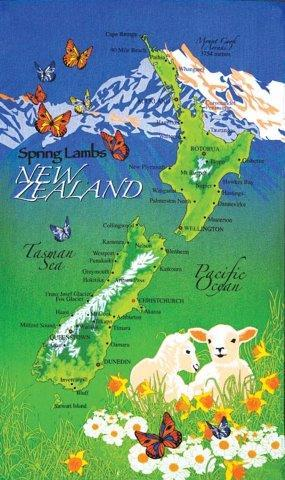 PK-65052 - Tea Towel - NZ Map With Spring Lambs - New Zealand Gifts & Souvenirs