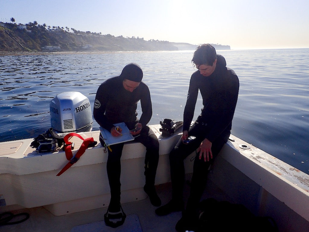 Rilee and Ben mapping their dive to clear sea urchin barrens and map the SeaTrees kelp restoration project