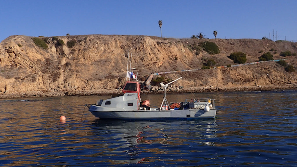 Urchin fisherman getting ready to clear urchin barrens and restore kelp forests at White Point, Palos Verdes, California.