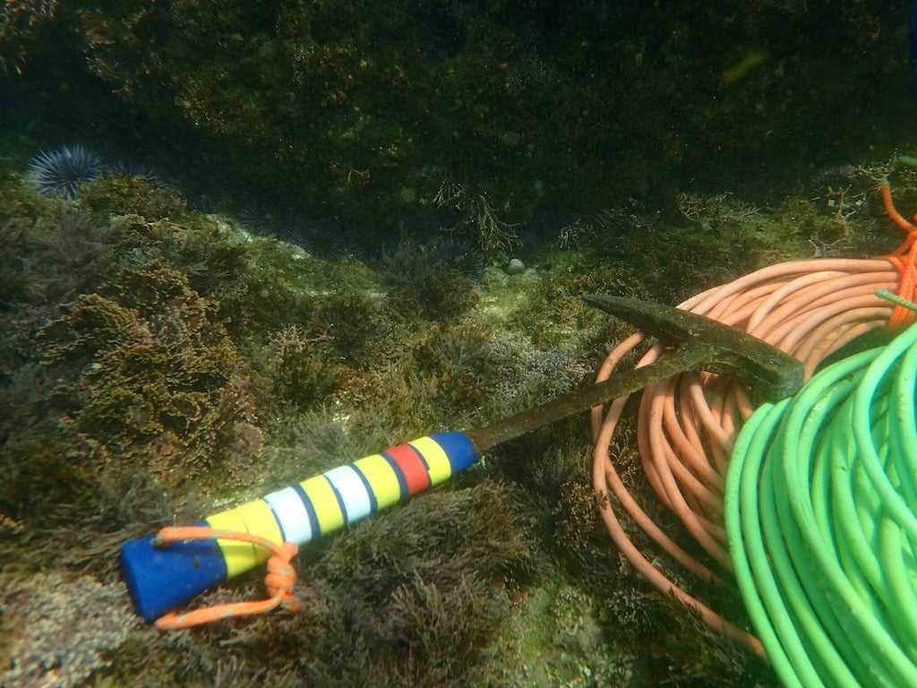 Tools needed for clearing sea urchin barrens. A rock hammer and heavy and highly visible electric cords.