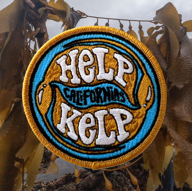 Help California's Kelp Patch