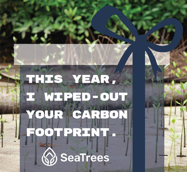 Gift an Ocean Positive Year