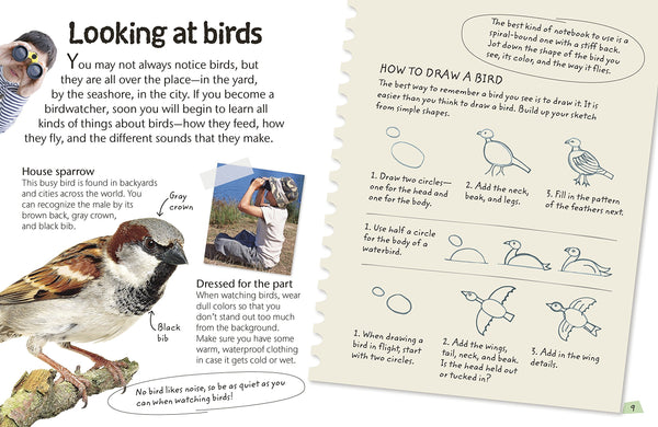 Birds Activity Book For Kids