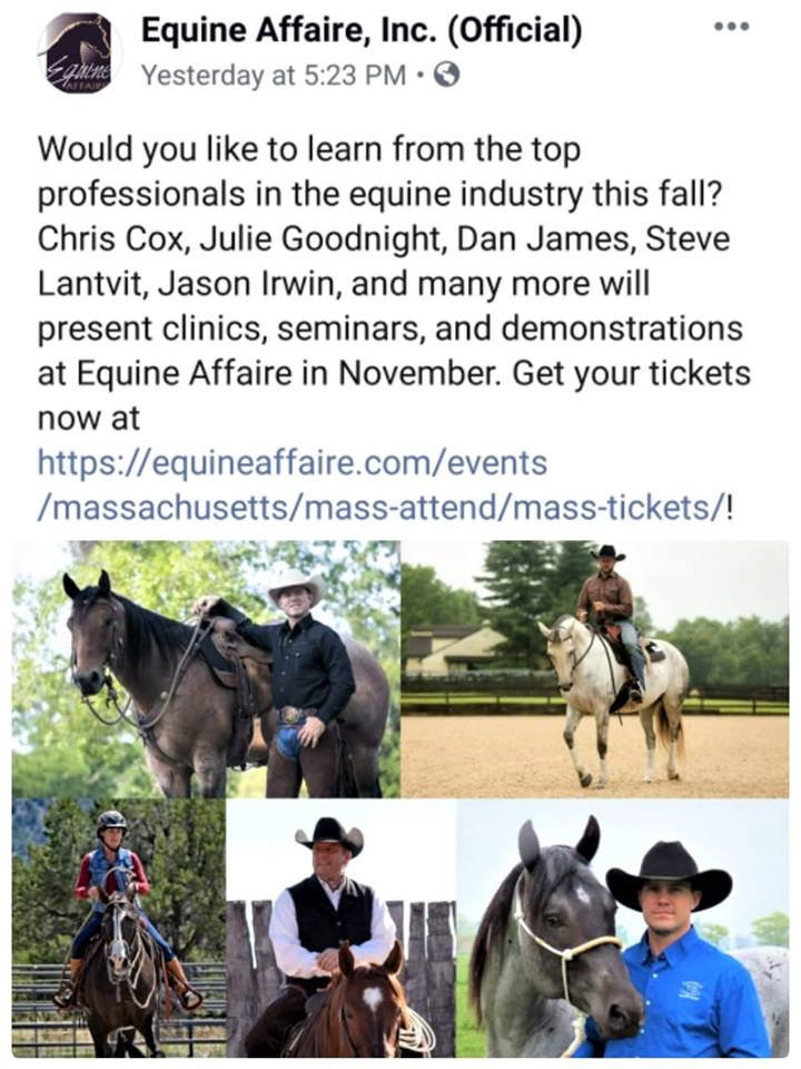 Equine Affaire Jason Irwin clinician Massachusetts Horsemanship Colt Starting