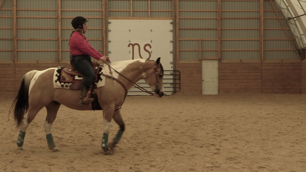 Horsemanship Training video Steering exercises horse training horse tips horse exercises