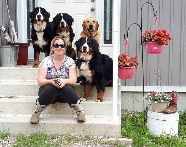 Bronwyn and her bernese mountain dogs and Cooper