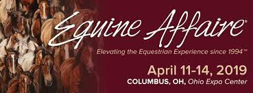 Jason Irwin Ohio Equine Affaire coach presenter clinician horses horsemanship