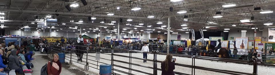 Jason presenting at Equine Affaire Massachusetts