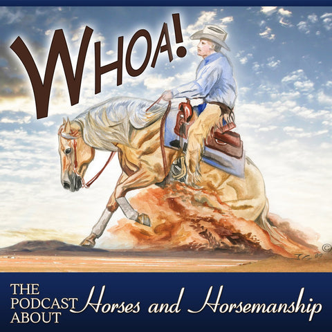 Whoa Podcast all about horses with Jason Irwin The Horse Trainers Horsemanship Horse Training