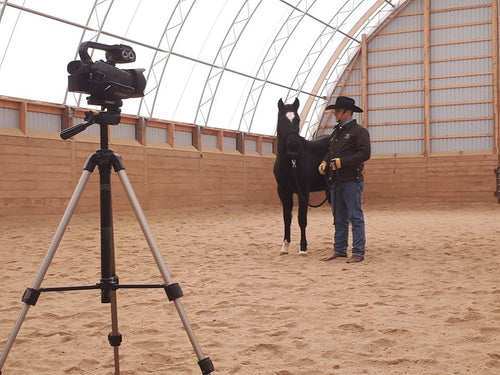 Training Videos - 6 Week Horsemanship Journey (Ground Exercise Series) - Available on Vimeo!