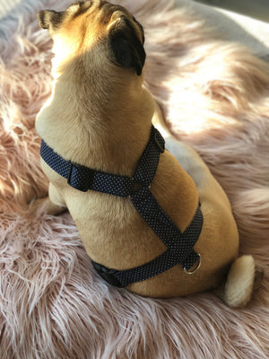 The Dottie Harness