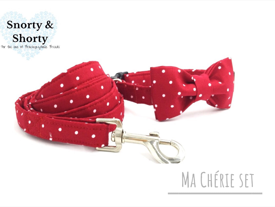 DOG, CAT, PET SHOP, dog collar, pet accessories, polka dot, red and white collar, vintage, bulldog, pug, frenchie,