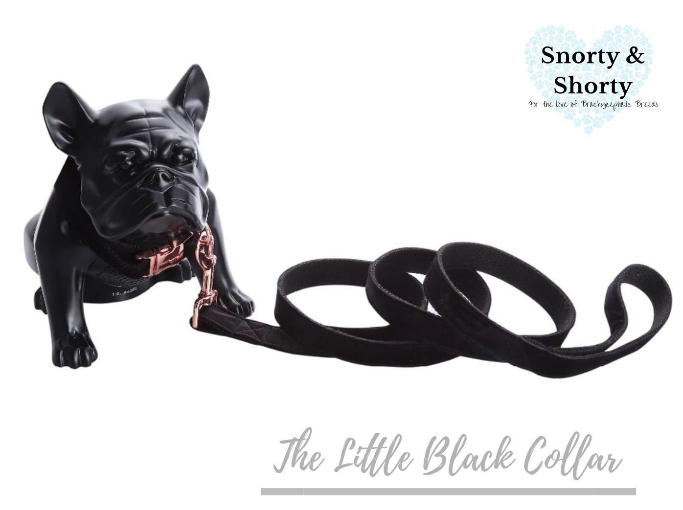 The Little Black Collar - Velvet Collection