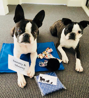boston terrier cooling mat, cooling device, cooling mat, pet supplies, pet accessories